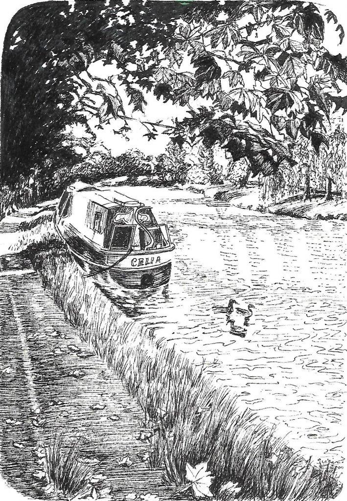 berkhamsted-canal