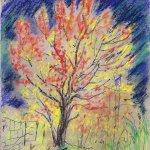Wild Cherry Tree, Autumn thumbnail