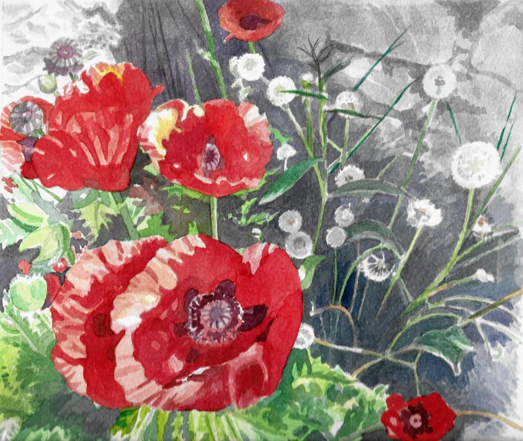 Poppies and Dandelions I