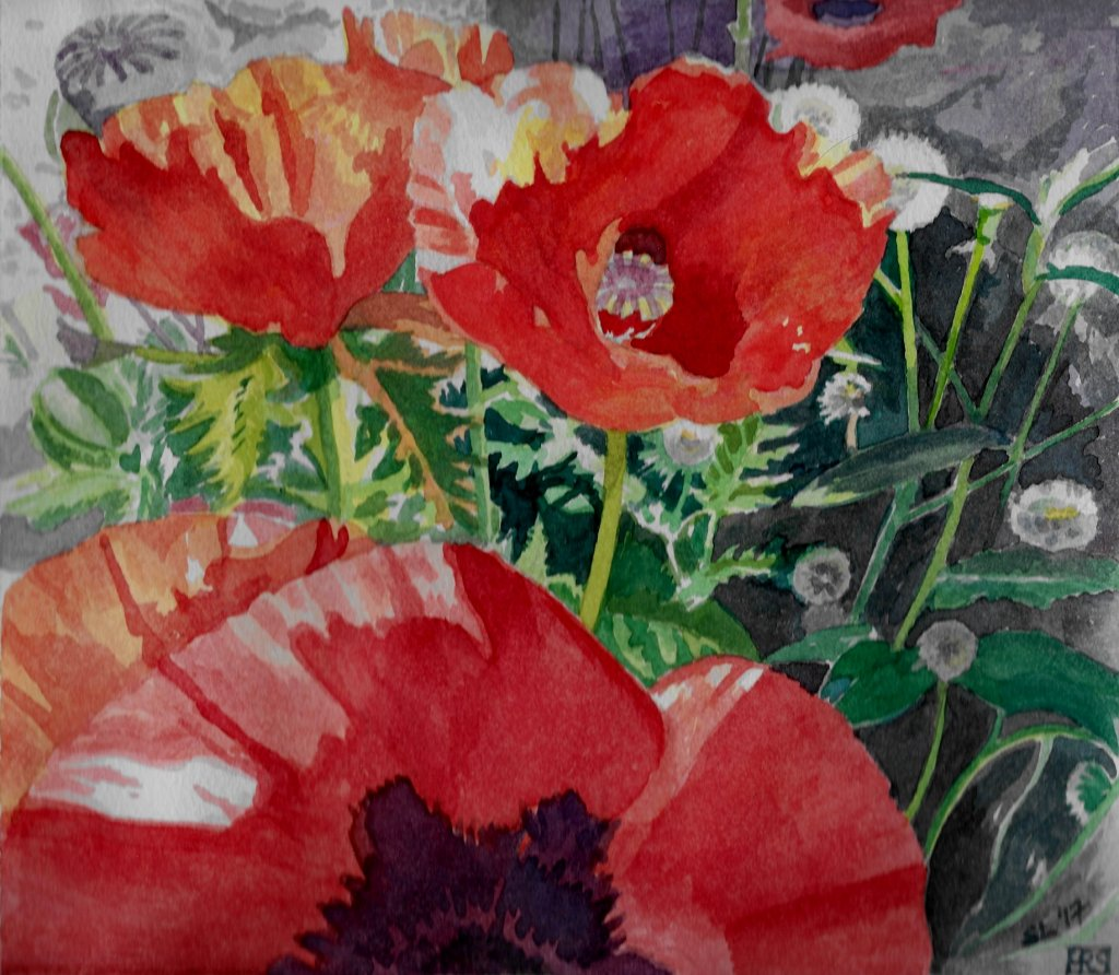 Poppies and Dandelions II